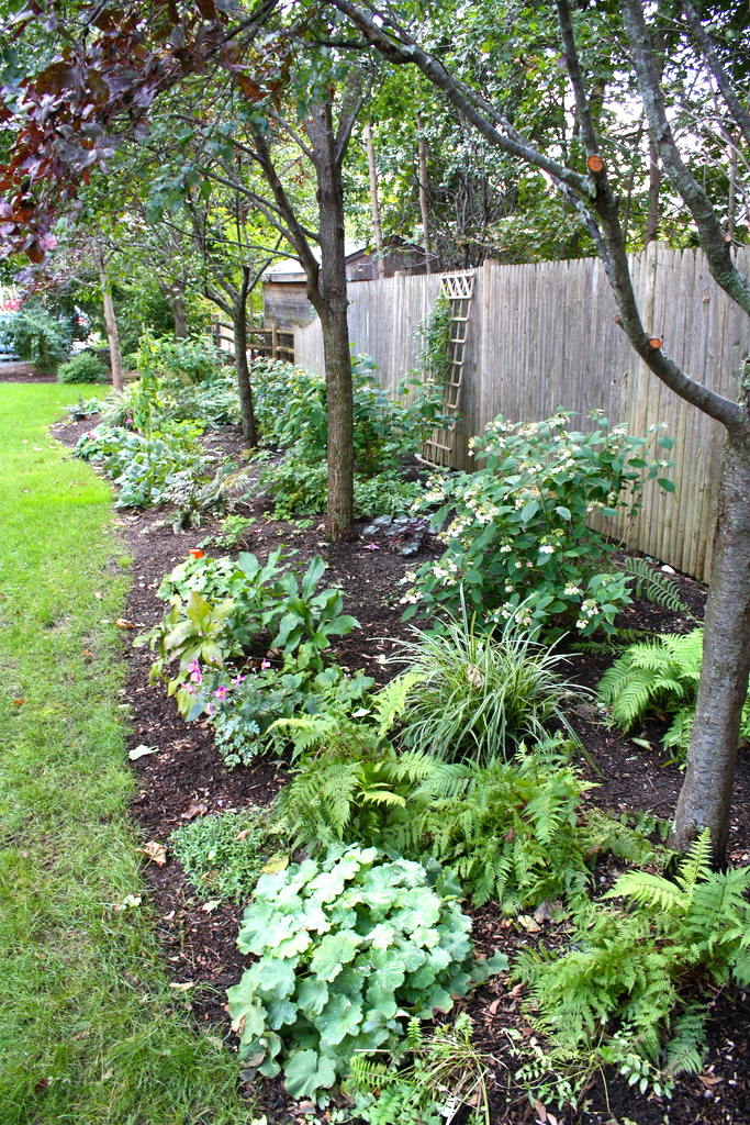 ... Services Design for Residential Properties Perennial border design