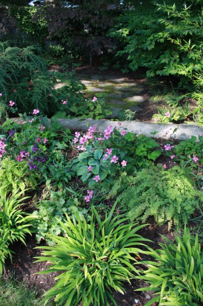 Shade Garden Plans Photograph | Shade garden design @ Pumpki